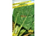 SEEDS OF SWISS CHARD COSTA SMOOTH GREEN CUTTING