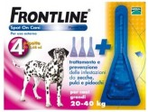 FRONTLINE SPOT-ON 20 - 40 KG. 4 PIPETTE